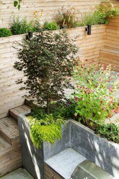 Backyard Garden With Cedar Wood Planks