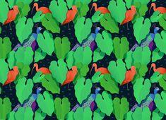 Jungle Birds — NEW : EMMANUELLE WALKER