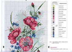 Gallery.ru / Фото #40 - Цветы 2 - logopedd