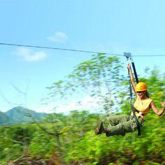 Kauai: A daring rider zooms 150 feet above the jungle at Princeville Ranch.