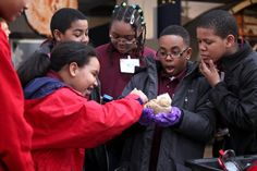 Students examines a human brain at a Brain Awareness event at the National Museum of Health and Medicine.