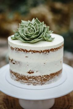 Fresh succulent used for cake decor. The cake itself looks simple as it may be - an almost naked cake partially covered with white frosting. Pretty Cakes, Beautiful Cakes, Amazing Cakes, Baby Shower Cakes, Succulent Wedding Cakes, Succulent Cakes, Naked Cakes, Bolo Cake, Wedding Cake Inspiration
