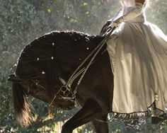 She rides to meet her Knight in shining wedding tux:)