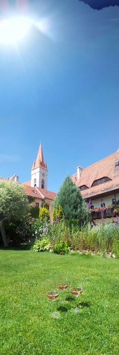 Znojmo, Czech republic. Summer time. Fragolino.