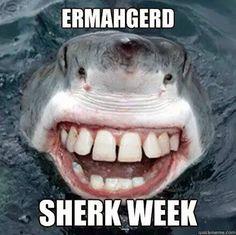 Image of: Liquid Facelift Ermahgerd Sherk Week Ermahgerd Meme Super Funny Funny Pinterest Funny Horse Memes 13 Picsvitaminha Vitaminha Horses Funny