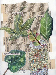Jane LaFazio watercolor collage