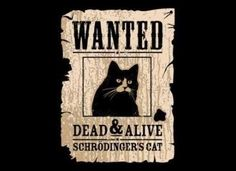 For all Big Bang Theory & Sheldon fans: Schrodinger's Cat. Wanted, Dead & Alive T-shirt Humour, Nerd Humor, Nerd Jokes, Corny Jokes, John Ross Bowie, The Bigbang Theory, Dead Alive, Schrodingers Cat, Magazine Collage