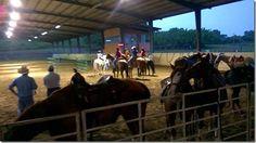 """Fin de semana familiar con """"Caballo, Copla y Llano"""" el 29 y 30 de agosto en Panamá http://www.inmigrantesenpanama.com/2015/07/24/fin-de-semana-familiar-con-caballo-copla-y-llano-el-29-y-30-de-agosto-en-panama/"""
