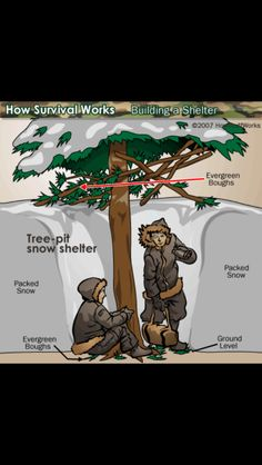 Best bushcraft tips that all survival fanatics will definitely want to know now. This is basics for wilderness survival and will certainly defend your life. Bushcraft Camping, Camping Survival, Outdoor Survival, Survival Prepping, Survival Skills, Survival Gear, Winter Survival, Tactical Survival, Survival Stuff