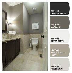 Intellectual Gray Chip It! by Sherwin-Williams Jorgensen - Bathroom Decor Ideas Interior Paint Colors, Paint Colors For Home, House Colors, Interior Painting, Wall Colors, Intellectual Gray, Beige Bathroom, Bathroom Colors, Master Bathroom
