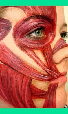 Facial muscles makeup- get students to do to remember muscles of face! Horror Makeup, Zombie Makeup, Scary Makeup, Makeup Art, Halloween Makeup, Sfx Makeup, Muscles Of The Face, Face And Body, Facial Muscles Anatomy