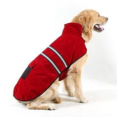 Hiado Dog Pets Winter Coat Vest Dressing with Reflective Belt for Hiking and Hunting in Cold Weather (Xxl, Extra Large, 32 Inches Back Size) - http://www.thepuppy.org/hiado-dog-pets-winter-coat-vest-dressing-with-reflective-belt-for-hiking-and-hunting-in-cold-weather-xxl-extra-large-32-inches-back-size/