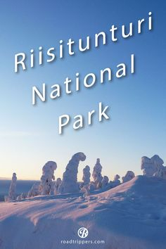 Nope, you aren't looking at a movie set, it's Riisituntri National Park, a fantastical winter wonderland! Places To See, Places To Travel, Beautiful World, Beautiful Places, I Want To Travel, Travel Maps, Ways Of Seeing, Amazing Pictures, Monuments