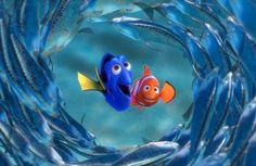 Nemo. Dory será el centro de atención de la próxima historia del estudio. Fotos: Vanguardia-Archivo
