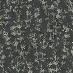 Weeds | EC51300