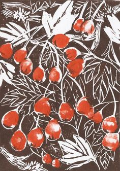 I adore the colors and the woodcut/illustration feel of this image. Hawthorn by Beth Knight Botanical Illustration, Graphic Design Illustration, Illustration Art, Linocut Prints, Art Prints, Block Prints, Illustrator, Motif Floral, Art Graphique