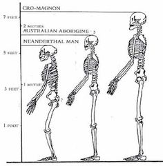 Giant Human Skeletons: Cro Magnon Giant Race in Europe