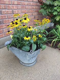 Coal scuttle rescued from trash and repurposed for flowers Reuse, Repurposed, Recycling, Flowers, Plants, Plant, Upcycle, Royal Icing Flowers, Flower