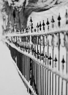 Cemetery Fence in Late Winter by Alice M. Black White Photos, Black And White, Old Gates, Iron Gates, Winter Magic, Winter Garden, White Photography, Beautiful World, Cemetery