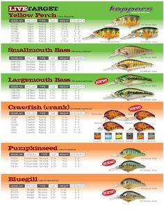 LiveTarget 2009 New Baits Chart