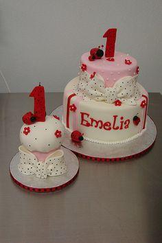 ladybug 1st birthday cake and smash cake