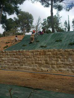 Muro, remallado sobre el talud y mirador.