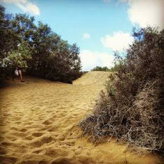 Photos vacances: les Dunes de Playa Del Ingles – Gran Canaria