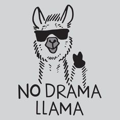 No Drama Llama T-Shirt by SnorgTees. Men's and women's sizes available. Check out our full catalog for tons of funny t-shirts.