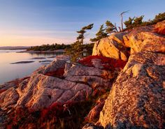 Georgian Bay, Ontario, Canada: the rocky islands with stark pines struggling to survive make for inspirational photographs. Wonderful Places, Beautiful Places, Beautiful Pictures, Group Of Seven Paintings, Canadian Art, Wild Nature, Landscape Photography, Art Photography, Beautiful World