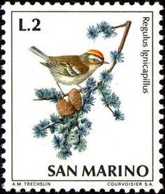 ◇San Marino  1972    Common Firecrest (Regulus ignicapillus)