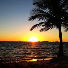 Gorgeous sunset by the water @SunnyIslesBeach : :  #sunset #beach #miami #palmtree #thisview #miamilove #305 #landscape #sun #miamibeach