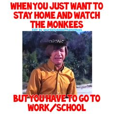 The Monkees Memes David Jones Mike Nesmith Peter Tork Micky Dolenz 1960's Monkees Funny Monkees Facts Fun Facts Monkees Trivia  InductTheMonkees Rock And Roll Hall Of Fame Monkees Relatable