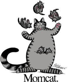 Momcat. I love Kliban's Cats.