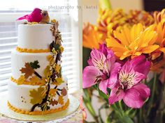 Photography by Katsi - Lunch Party - Dallas Event/Party Photographer