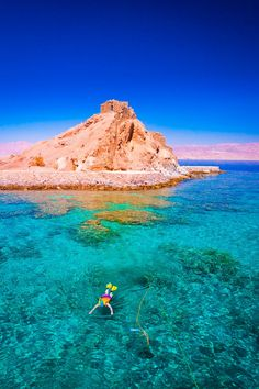 Experience Egypt's underwater splendors on this full-day Red Sea snorkeling trip by board from Hurghada.