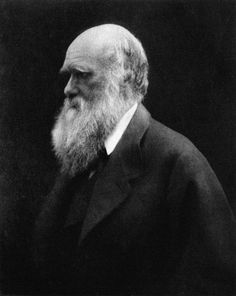Charles Darwin Darwin S Work Has Enabled Us To See The Position Of Man And Of Our Present Civilization In A Truer Light Man Is Not A Finished Product