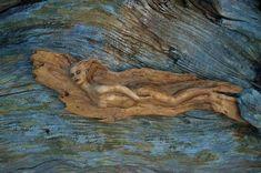 Captivating Driftwood Sculptures by Debra Bernier