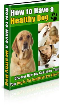 http://www.9plr.com/how-to-have-a-healthy-dog/ Discover How You Can Insure That Your Dog Is The Healthiest Pet Alive!