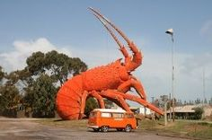 Discover Larry The Red Big Lobster in Kingston SE, Australia: A massive metal lobster welcomes tourists to a roadside restaurant. South Australia, Australia Travel, Biggest Lobster, Roadside Attractions, Big And Beautiful, Larry, Red, Kingston, Sculptures