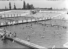 Den Bosch: Zwembad de IJzeren Vrouw in het park in 1938. Op de voorgrond het vrouwenbad, daarboven het kinderbadje en boven het mannenbad.