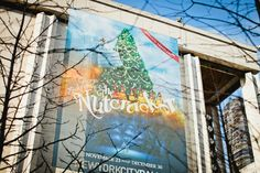 """Reason #201: The magical performances in the New York City Ballet's holiday classic """"The Nutcracker."""" #newyork"""