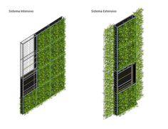 Materiales: Muros Verdes / Descontaminantes, Acústicos y Térmicos,
