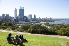 City views. Kings Park.