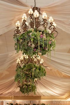 Beautiful ceiling treatment with fabric, chandeliers & flowers Flower Chandelier, Hanging Chandelier, Tent Decorations, Reception Decorations, Wedding Arrangements, Wedding Centerpieces, Garden Party Wedding, Green Wedding, Wedding Renewal Vows