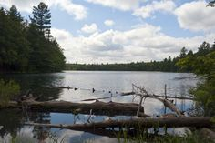 Picture of the view of Peck Lake from the shores in the trail of the same name in Algonquin Provincial Park in Ontario, Canada.