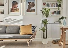 Air quality is an increasing worry for those of us who live in cities, but you can help clean contaminants from your house and office with these efficient, oxygen-producing houseplants. Customer Survey, Houzz, Houseplants, Pop Up, Interior Architecture, Gallery Wall, Home And Garden, Cleaning, The Originals