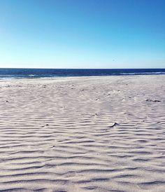 Ponto looked like a desert beach today with the wind. #pontobeach #wanderlust #wind #sand #desert #desertbeach #nature #beautiful #afterrain #crisp #crazykwistin #Carlsbad @cbadmag @capereycarlsbad @caroleradziwill @surfer_magazine @carlsbadcagov by crazykwistin