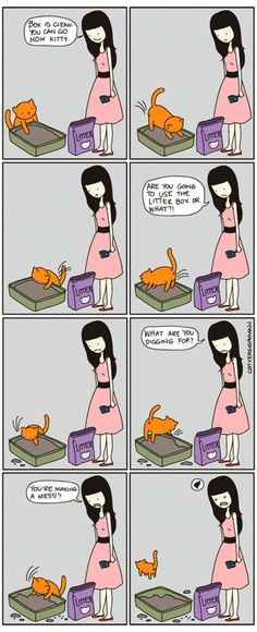 like to dig through fresh litter but nothing ever comes of it. - 'Cat vs Human' by Yasmine Surovec Funny Cat Memes, Funny Cats, Funny Animals, Cute Animals, Crazy Cat Lady, Crazy Cats, I Love Cats, Cute Cats, Cat Vs Human