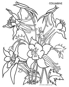 Geranium coloring pages coloring pages for Gerri the geranium coloring page