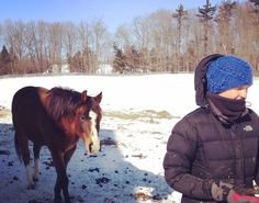 What happened when I – a skeptic – did Horse Therapy